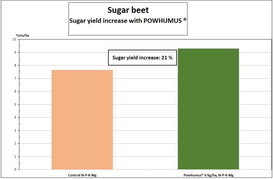 table of yield increase of sugar beets after application of POWHUMUS