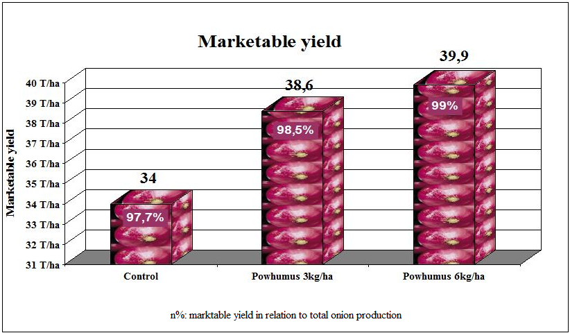 table of yield increase of onions after application of POWHUMUS
