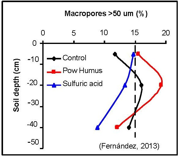 Increase of macropores in a compacted soil in avocado culture