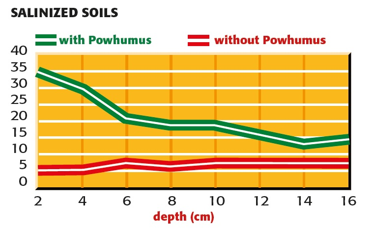 Splitting of salt with and without powhumus